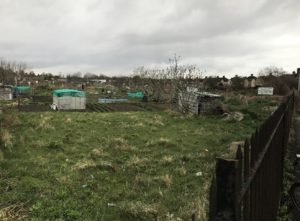 Fairfax Road allotments in March 2018.