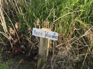 "A sign saying ""Bees Welcome""."